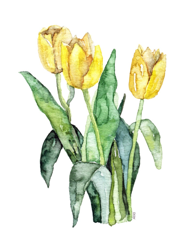 Tulip Painting  Print from Original Watercolor Painting image 0