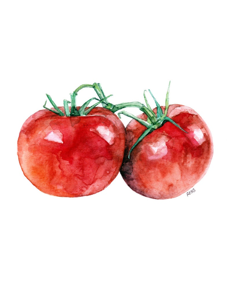 Tomato Painting  Print from Original Watercolor Painting image 0