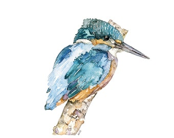 """Kingfisher Painting - A Print from my Original Watercolor Painting, """"The Fish King"""", Bird, Blue, Water Bird, Bird Prints"""