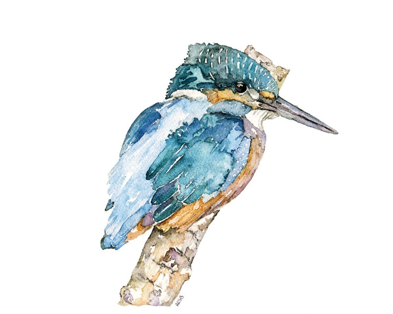 Kingfisher Painting  A Print from my Original Watercolor image 0