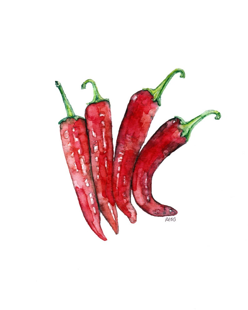 Hot Pepper Painting  Print from Original Watercolor Painting image 0