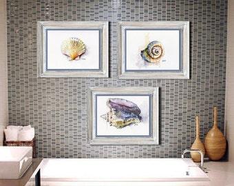Seashell print set of 3 - 8x10 Watercolor Paintings, Seashell Watercolors, Beach Decor, Sea Shells, Seashell Art, Ocean, Seashell Print
