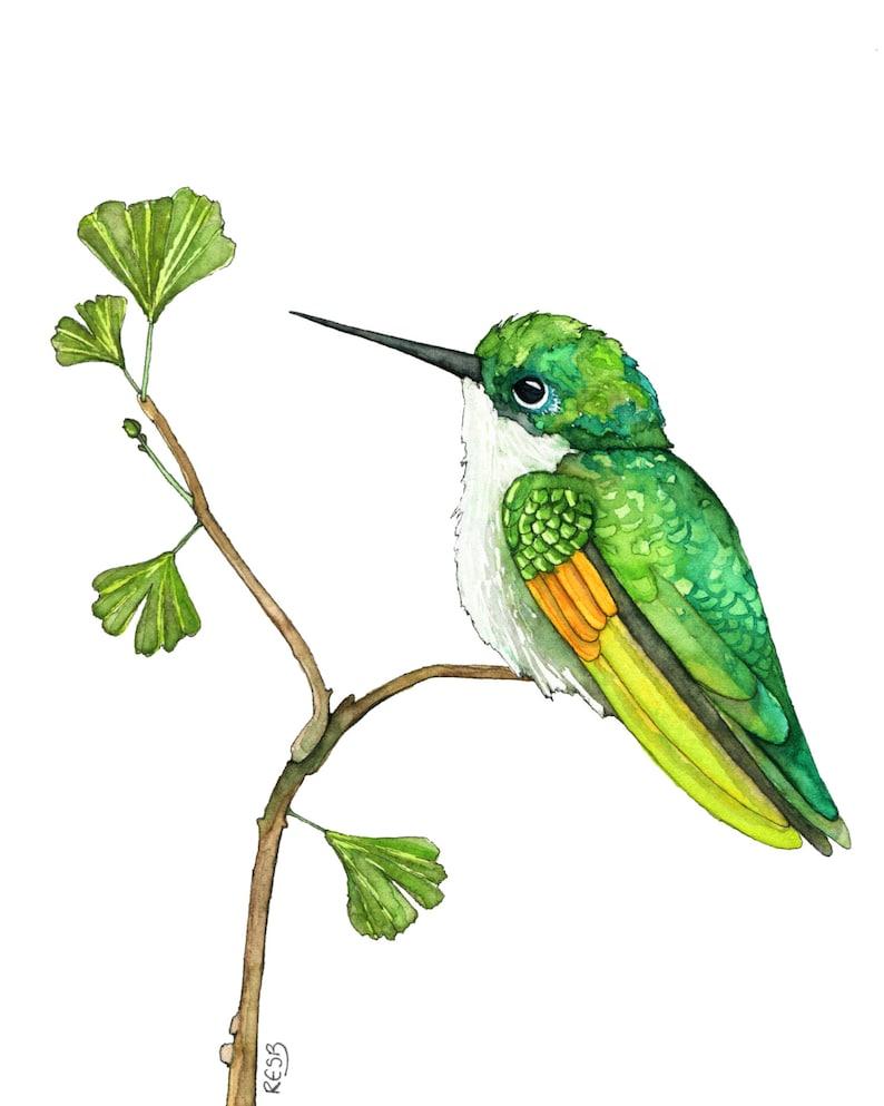 Hummingbird Painting Watercolor Painting Hummingbird Art image 0