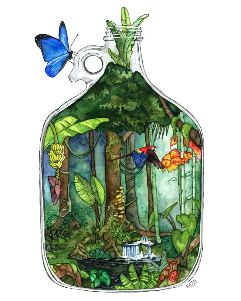 Rainforest Decor Painting Jungle Rainforest Art Terrarium image 0