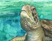 Sea Turtle Painting - Print of Green Sea Turtle Underwater, Watercolor Painting, Sea Turtle Art
