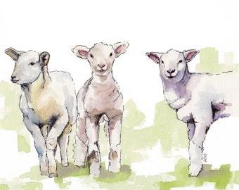 "Lamb Painting - Print from Original Watercolor Painting, ""Three Lambs"", Nursery Decor, Sheep, Lamb Nursery, Baby"