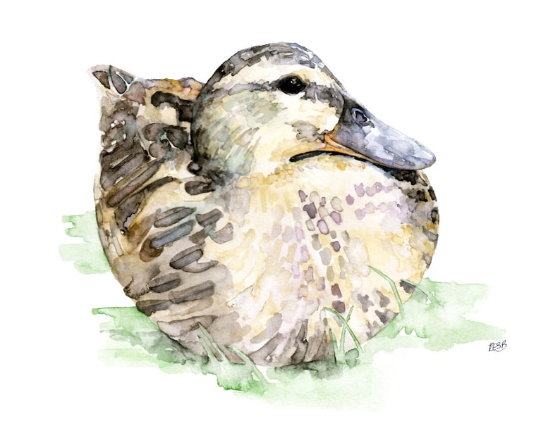 Duck Painting  Print from Original Watercolor Painting image 0