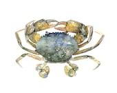 Blue Crab Painting- Print...