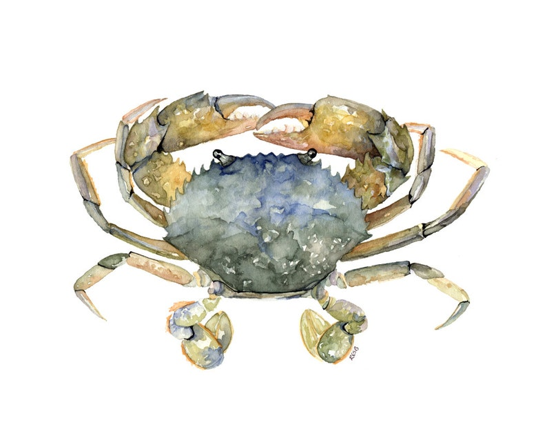 Blue Crab Painting Print from Original Watercolor Painting image 0