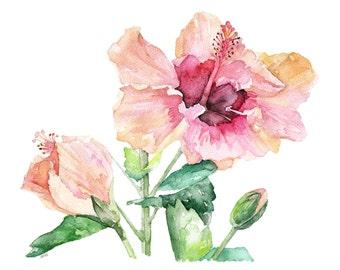 "Hibiscus Painting - Print from Original Watercolor Painting, ""Hibiscus and Bud"", Hibiscus flower, Flowers, Watercolor Flower"
