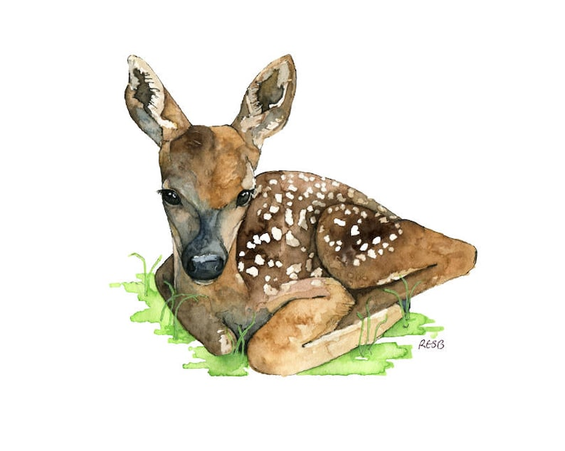 Watercolor Fawn Painting  Print titled Baby image 0