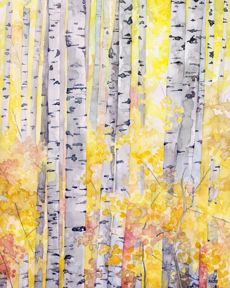 Birch Trees Painting  Print from my Original Watercolor image 0