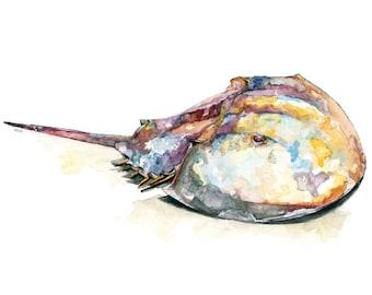 "Horseshoe Crab - Print from Original Watercolor Painting, ""Horseshoe Crab"", Beach Decor, Seashore, Crab"