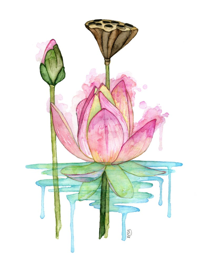 Watercolor Painting Lotus Painting Watercolor Print Etsy