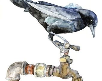 "Blackbird Painting - Print from Original Watercolor Painting, ""The Thirsty Bird"", Songbird, Spigot, Faucet, Bird Prints"