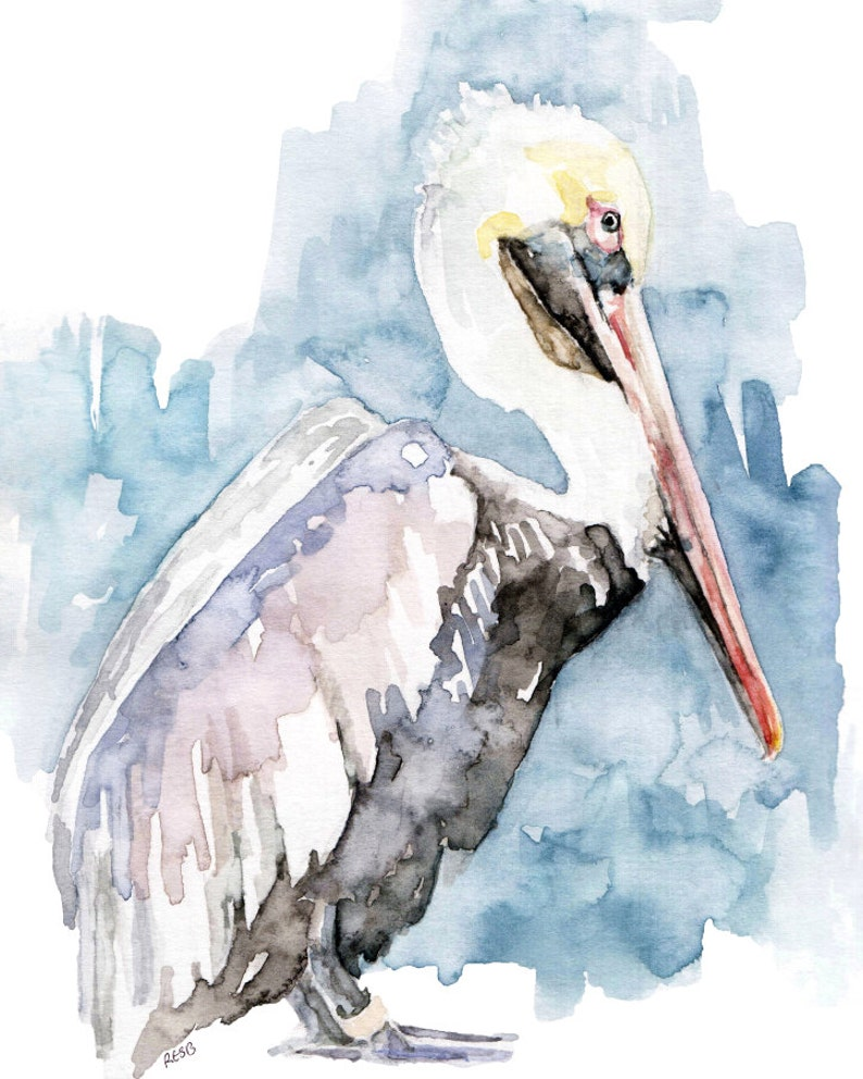 Watercolor Painting Pelican Painting Pelican Print Pelican image 0
