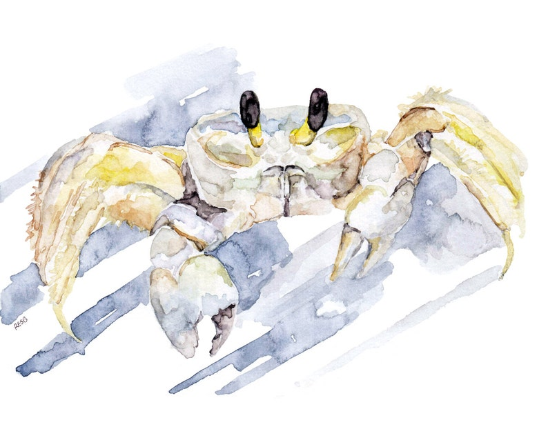Ghost Crab Painting  Print from Original Watercolor Painting image 0