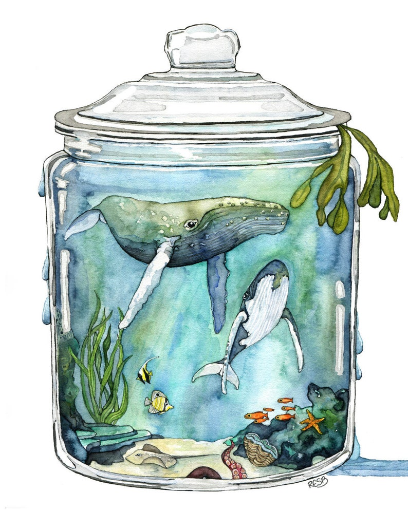 Watercolor Painting Whale Painting Terrarium Whale in image 0