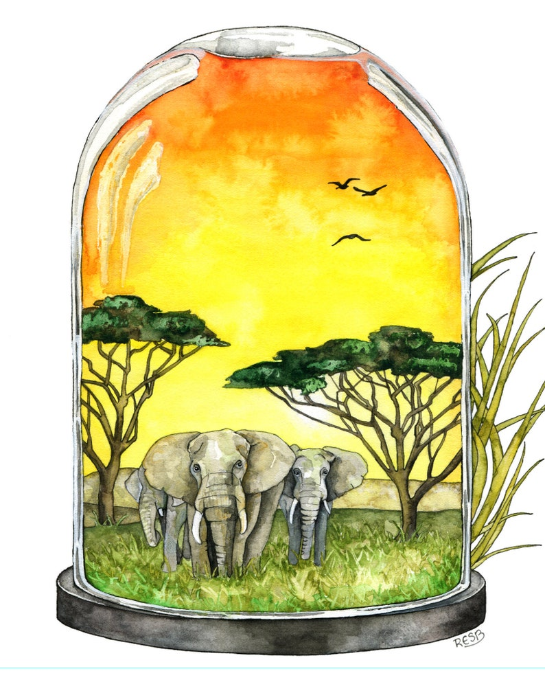 Watercolor Painting Elephant Painting Savannah African image 0