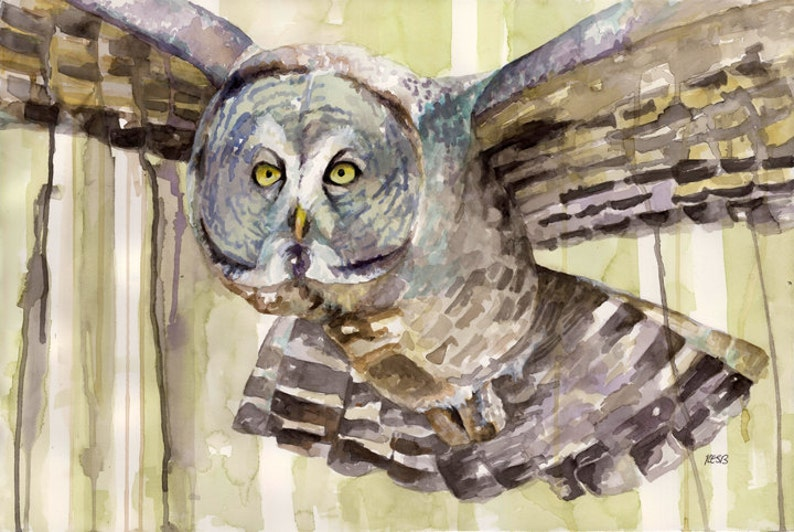 Owl Painting  Print from my Original Watercolor Painting image 0