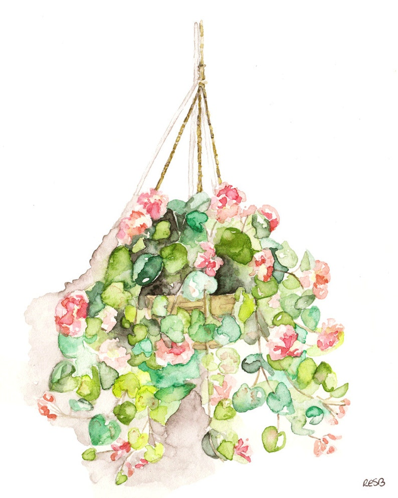 Hanging Flowers Painting  Print from Original Watercolor image 0