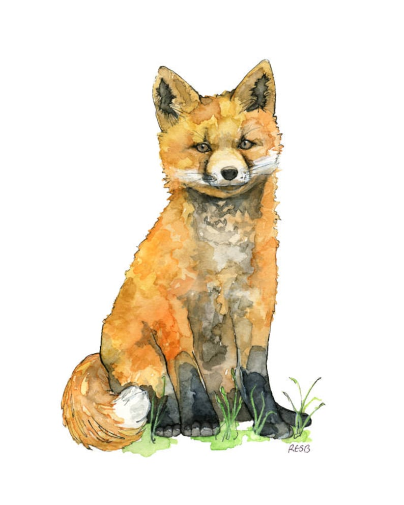Watercolor Baby Fox Painting  Print titled Baby image 0