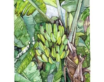 "Banana Tree Painting - Print from Original Watercolor Painting, ""Banana Tree"", Jungle, Tropical, Rainforest, Beach Decor"