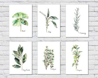 Herb Print Set of 6 - 5x7 Watercolor Prints, Herb Watercolors, Kitchen Decor, Botanical Print, Print Set, Herb Prints, Herb Painting, Herbs