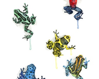 """Poison Dart Frog Print - From my Original Watercolor Painting, """"Poison Dart Frogs"""", Green Frog, Frog Wall Decal, Frog, Kids Wall Decal"""