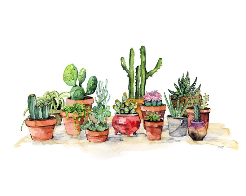 Potted Succulents Painting  Watercolor Print titled image 0