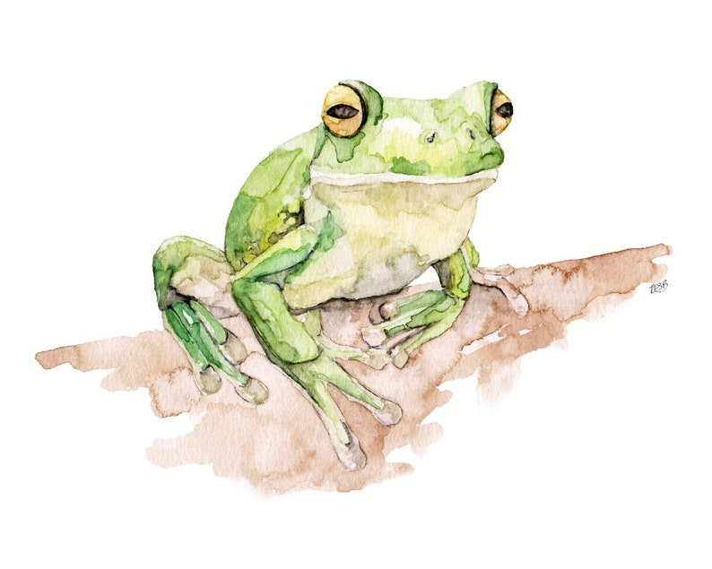 Tree Frog Painting  Print from Original Watercolor Painting image 1