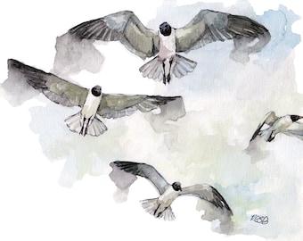 "Bird Watercolor Painting - Print from Original Watercolor Painting, ""Seagulls"", Flying Bird, Beach Decor, Ocean"