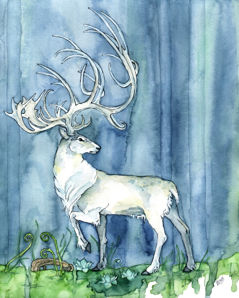 Watercolor Painting White Stag Painting Watercolor Print image 0