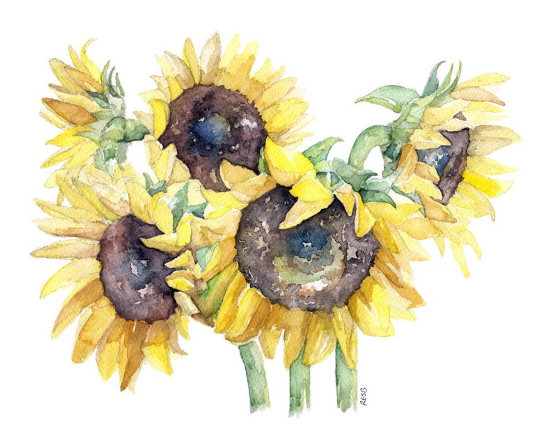 Sunflower Painting  Print from Original Watercolor Painting image 0