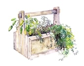 Potted Herb Painting - Pr...