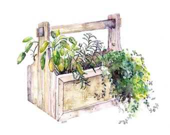 """Potted Herb Painting - Print from Original Watercolor Painting, """"Herb Box"""", Garden Decor, Green Herb, Botanical"""