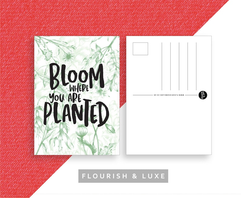 Bloom Where You Are Planted  Postcard image 0
