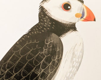 Puffin - Limited Edition Art Print