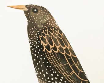 Starling - Limited Edition Art Print