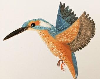 Kingfisher - Limited Edition Art Print