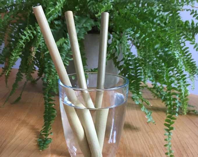 Bamboo Straw Set (3 straws) with hygienic cleaning brush