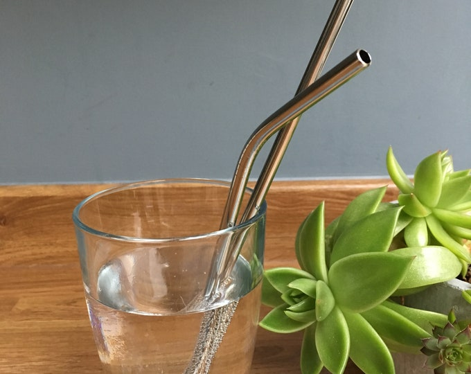 Stainless Steel Straw Set (3 straws with cleaning brush)