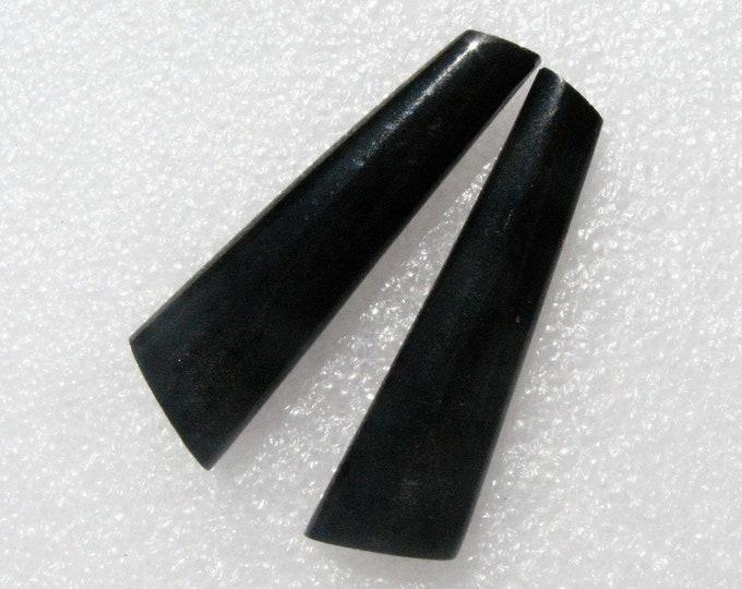 Long Black Petrified Palm Wood cabochon pair