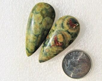 Rain Forest Jasper earring cabochons