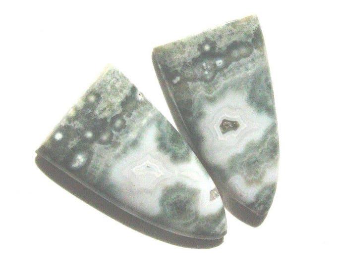Long Ocean Jasper earring cabochons