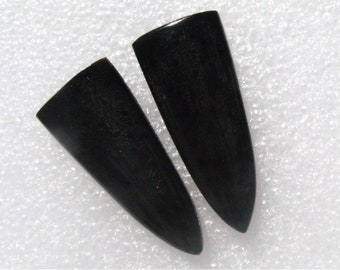 Long Black Petrified Palm Wood cabochon pair