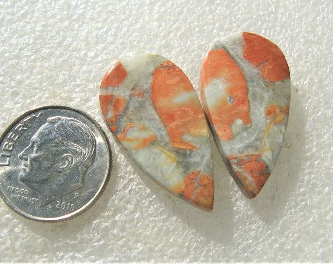 Maligano Jasper matched earring cabochons