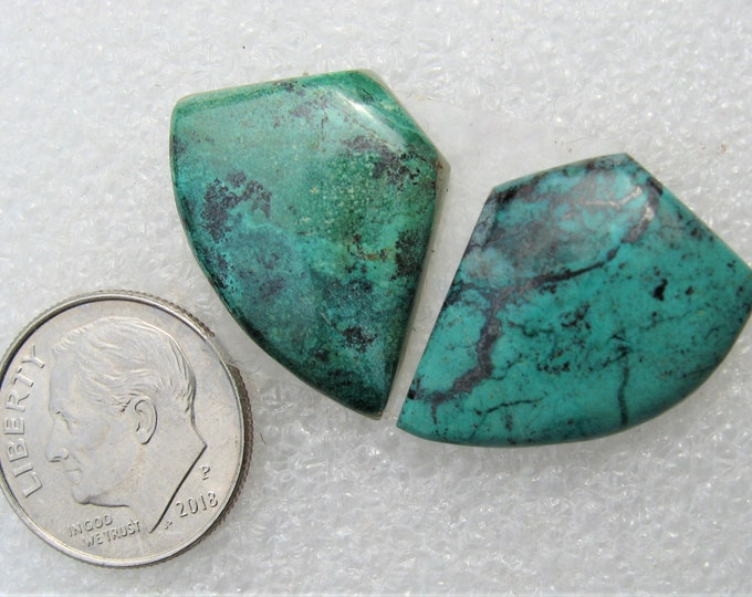 Parrot Wing jasper matched earring cabochons