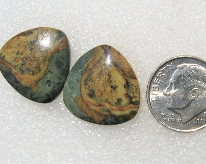 Morrisonite jasper earring cabochons