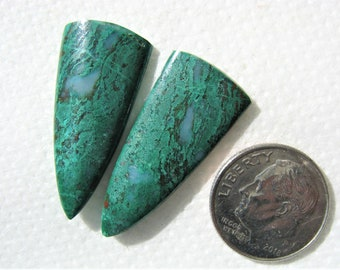 Long Parrot Wing jasper matched earring cabochons